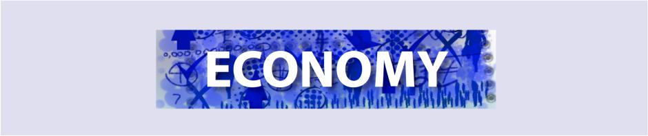 Economy banner blue 150